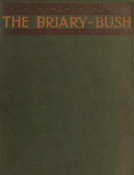 The Briary Bush A Novel
