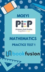 PEP Mathematics : Practice Test 1