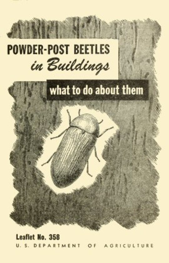USDA Leaflet 358: Powder-Post Beetles in Buildings What to Do About Them