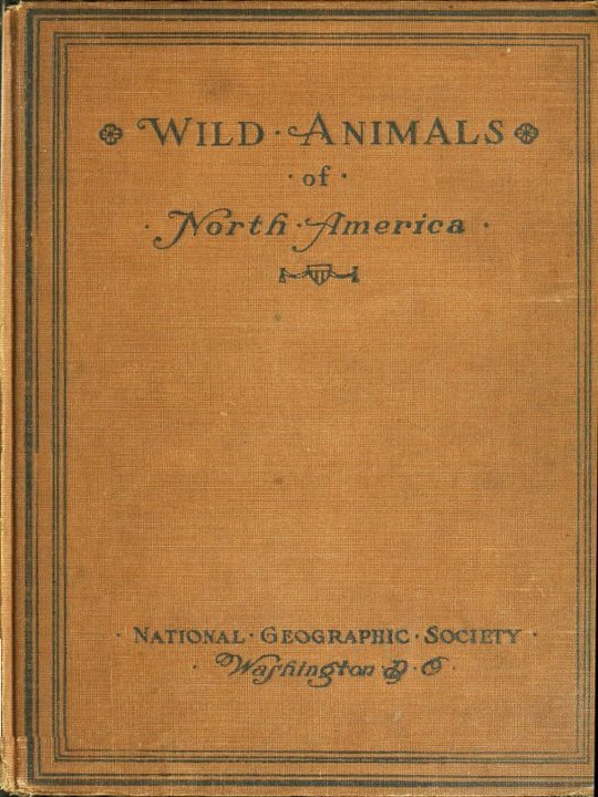 Wild Animals of North America Intimate Studies of Big and Little Creatures of the Mammal Kingdom