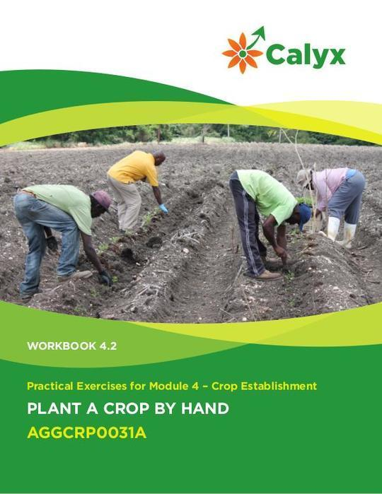 Plant a Crop By Hand