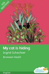 My cat is hiding