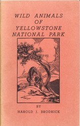 Wild Animals of Yellowstone National Park Yellowstone Interpretive Series Number 1