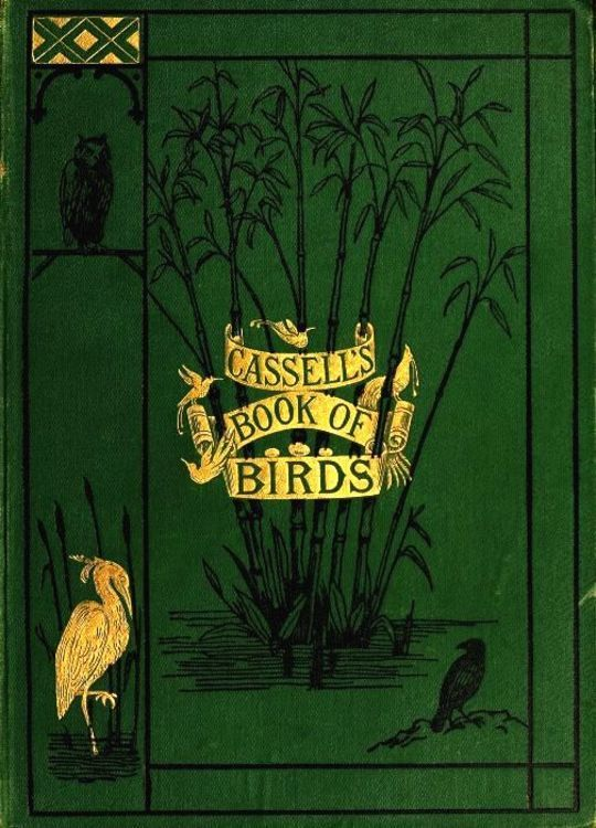 Casell's Book of Birds Volume 3 (of 4)