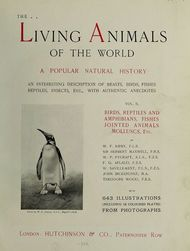 The Living Animals of the World Vol 2 of 2 A Popular Natural History