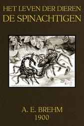 Leven der Dieren, Deel 3, Hoofdstuk 5 / De Spinachtigen