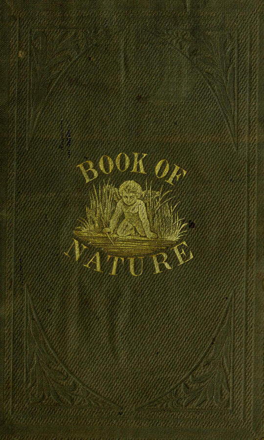 The Book of Nature / Containing information for young people who think of getting / married, on the philosophy of procreation and sexual / intercourse, showing how to prevent conception and to avoid / child-bearing: also, rules for management during labor and / child-birth