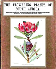 The Flowering Plants of South Africa; vol. 1/3