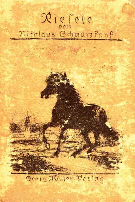 Riesele / Geschichte eines kleinen Pferdes