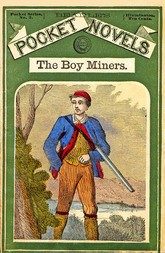 The Boy Miners The Enchanted Island, A Tale of the Yellowstone Country