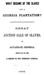 What Became of the Slaves on a Georgia Plantation? Great Auction Sale of Slaves, at Savannah, Georgia, March 2d & 3d, 1859