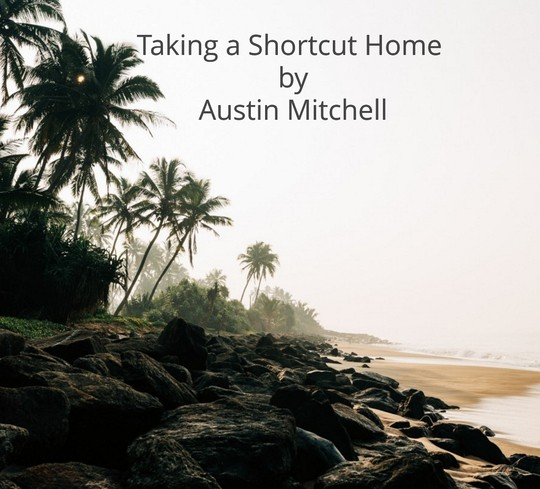 Taking_a_shortcut_Home.docx1000.docxAB