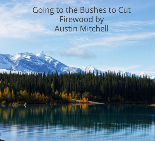 Going_to_the_bushes_to_cut_Firewood.80000.doc-PAYHIP