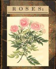 Roses: or a Monograph on The Genus Rosa
